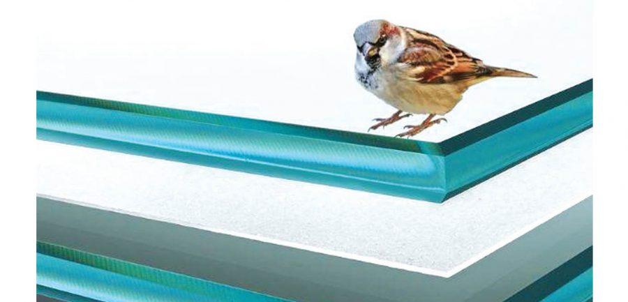 Strato Bird Friendly: First anti-collision EVA film to protect birds